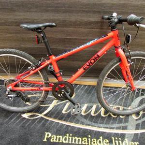 0af7cfab7c1 Jalgratas Evon Gauzy 24